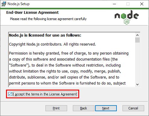 Node.js セットアップ 使用許諾契約同意チェック